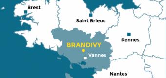 Brandivy(56): Des jeux de boules bientôt couverts à Brandivy?